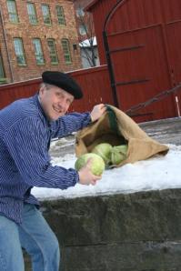 Anders Arnell lastar kål. (Ett av bokens roligaste kapitel handlar om   kål(kol)affärer i Gårda.)