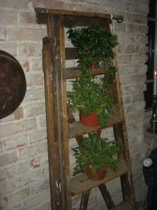 En trappstege kan användas som uppställningsplats för blomkrukor.