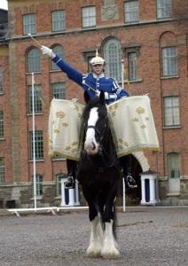 Pukhästen Gulliver. Foto: Beridna Högvakten, Claes Kärrstrand.