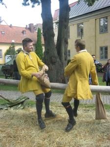 Två karoliner på en stång försöker få varandra att glida till marken.