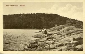 Nej, bildtexten stämmer inte. Detta är inte Stensjön utan Delsjön.